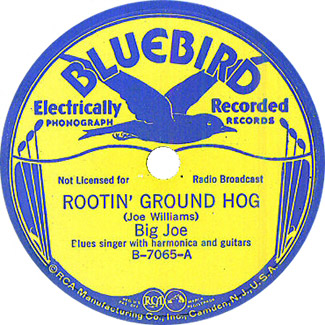 Big Joe Williams: Rootin' Ground Hog 78