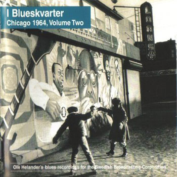 I Blueskavrter Vol. 2